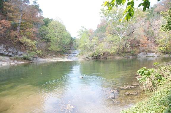 29May1921/WhistleCreekatNorthRiver.jpg